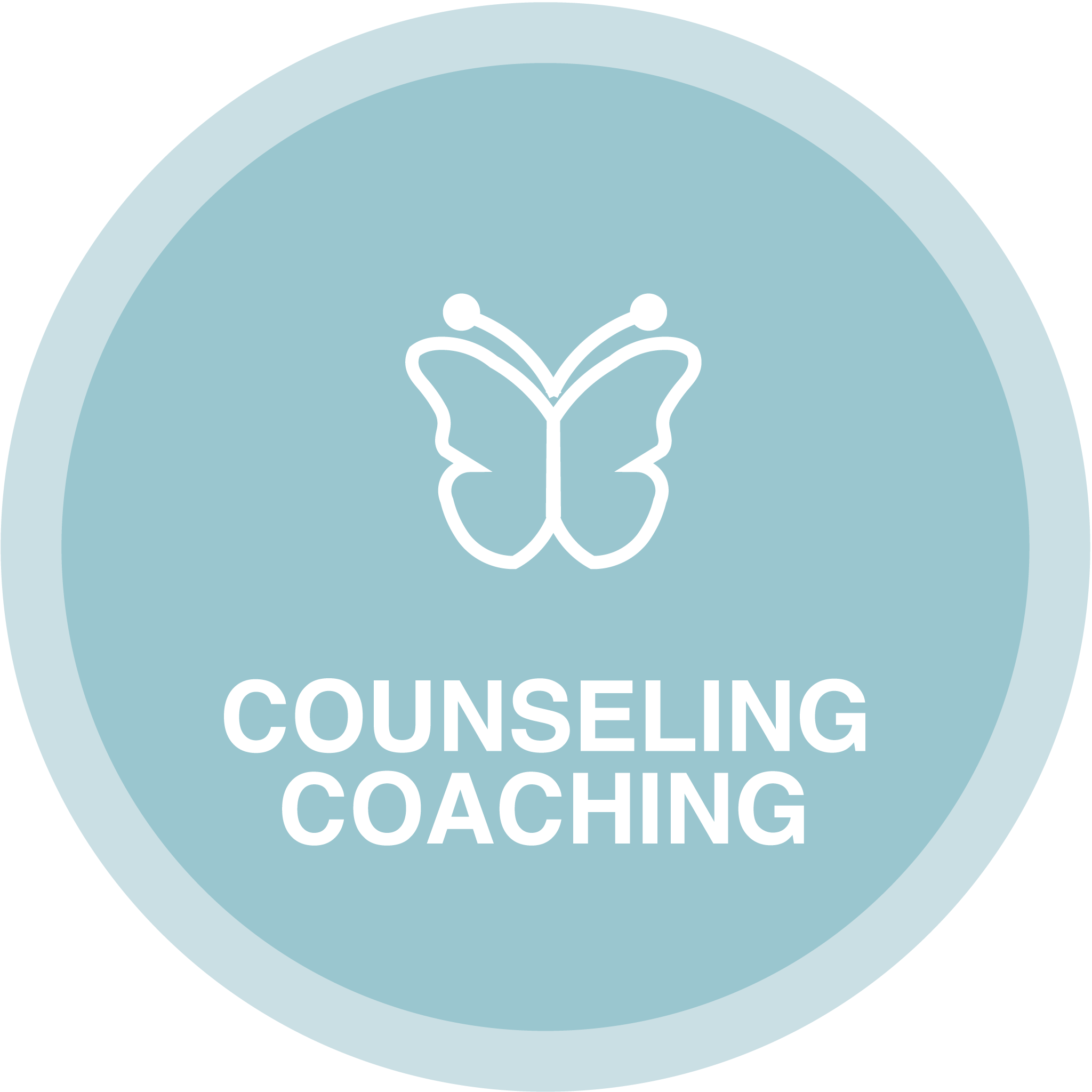 Counseling Coaching